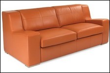 Furniture and Upholstery - Leather Conditioner